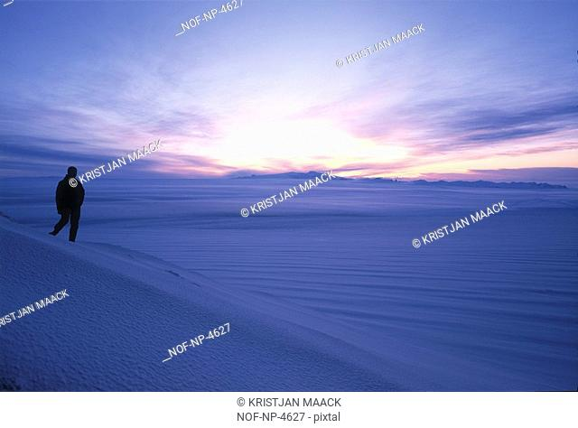Silhouette of a person standing in snow landscape at dusk