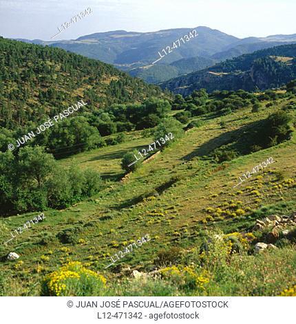 Sierra Mayabona, Mosqueruela. Teruel province, Aragón, Spain
