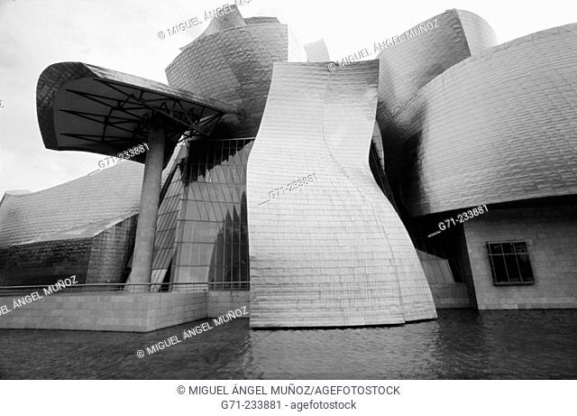 Guggenheim Museum. Bilbao. Basque Country. Spain