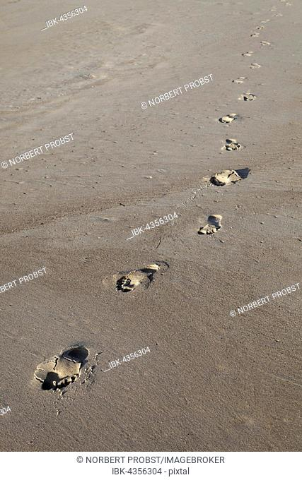 Barefoot footprints on the beach in the sand, Caloundra, Queensland, Australia