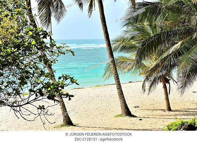 Dreamy beach in Africa, Kenya