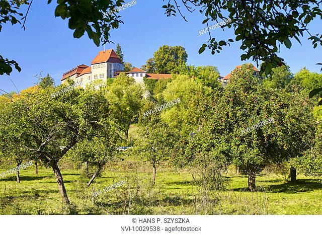 Creuzburg castle with fruit trees in Creuzburg, Thuringia, Germany