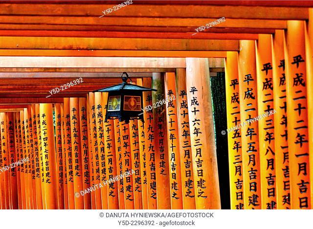 Torii gates path, Fushimi Inari Shrine, Kyoto, Kansai Region, Japan