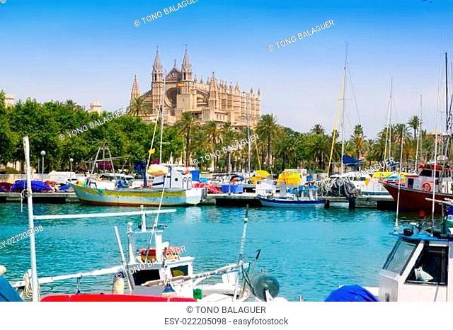 Majorca la Seu cathedral view from marina port of Palma