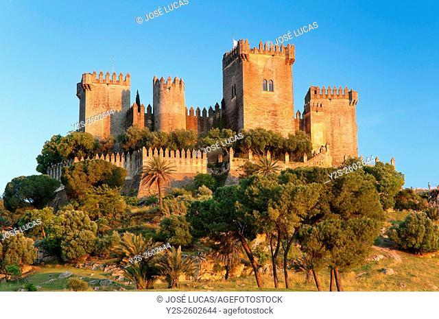 Castle, Almodovar del Rio, Cordoba province, Region of Andalusia, Spain, Europe
