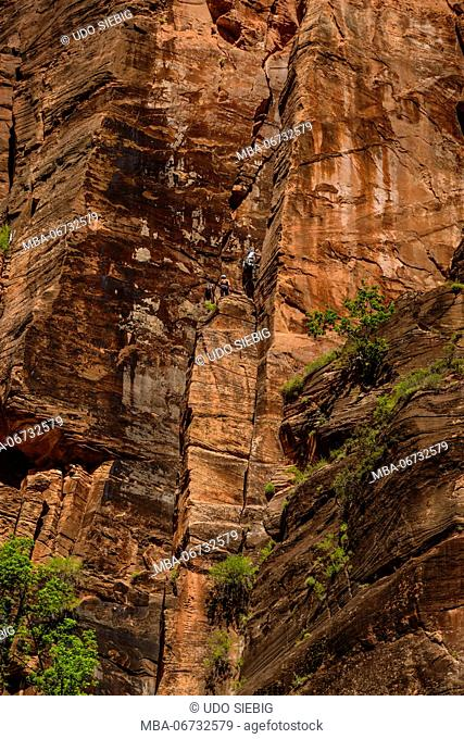 The USA, Utah, Washington county, Springdale, Zion National Park, Zion canyon, steep face at The Temple of Sinawava
