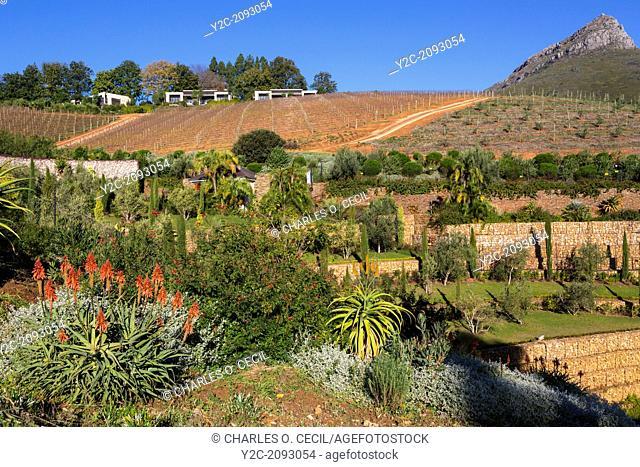 South Africa. Delaire Graff Winery, near Stellenbosch