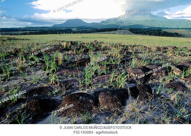 Tepuyes (flat top mountains) 'Muna' and 'Ptari'. Canaima National Park. Venezuela