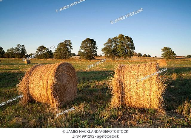 Hay bales in a farmer's field at sunset
