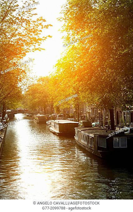 Netherlands. Amsterdam. Channel of Amsterdam at sunset