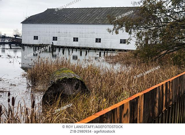 Extremely high tide on the Fraser River at the Britannia Boat Yard historical site in Steveston, Richmond, British Columbia