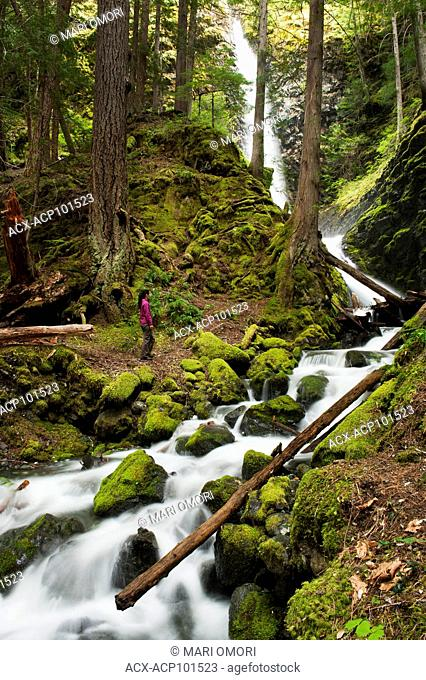 A hiker approaches a stream coming from Lupin Falls in Strathcona Provincial Park. Model Release signed