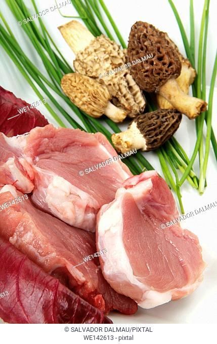 photography studio,feeding pork with vegetables,location girona,catalonia,spain,europe,