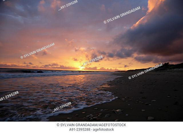 France, Poitou-Charente region, Charente maritime departement (17), Re island (Ile de Re), sunset on Bois-Plage beach