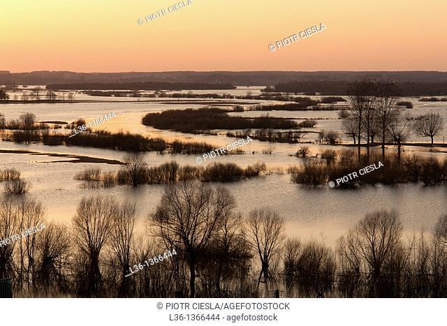 Biebrza National Park Spring floodplain of Biebrza and Narew river Sunset Poland . View from Strekowa Gora