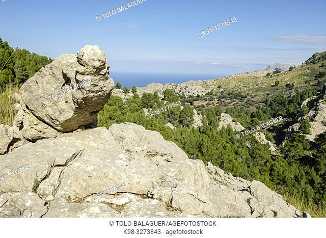 Es Binis, Fornalutx, Mallorca, balearic islands, Spain