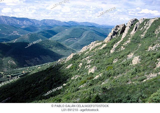 Sierra de Alcudia. Ciudad Real province. Castilla-La Mancha. Spain