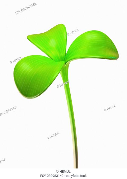 young green sprout trifoliate 3D