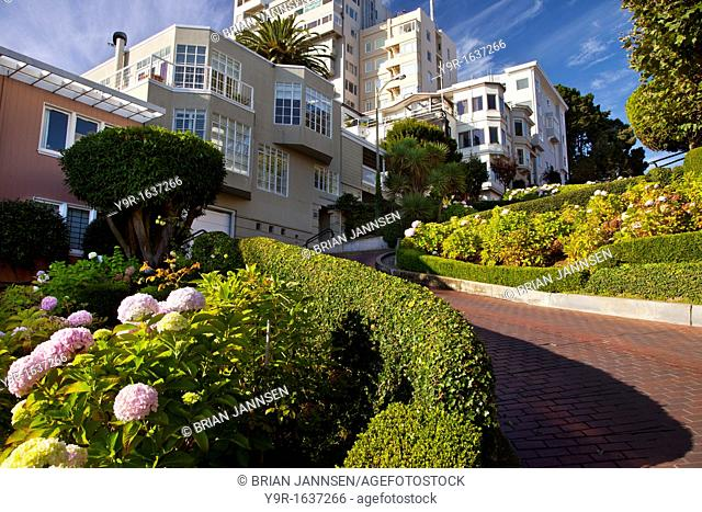 Flower-lined Lombard Street in San Francisco, California, USA