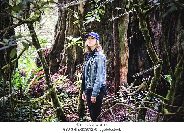 Young Woman Looking Around, Redwood National and State Park, California, USA