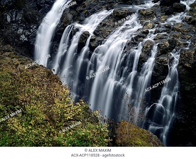Nature scenery of cascading waterfall in Englishman River Falls Provincial Park. Errington, Vancouver Island, BC, Canada