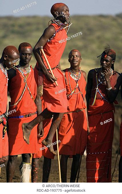 Masai warriors dancing, Masai Mara, Kenya