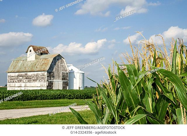 USA, Illinois, Tuscola, barn, rural farming, corn crop