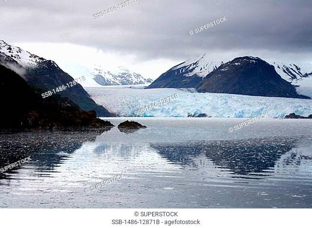 Chile, Southern Patagonian Ice Field, O'Higgins National Park, Amalia Glacier Skua Glacier