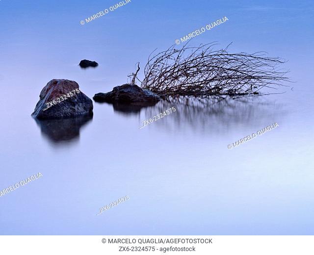 Alfacs Bay at dawn, detail of stones and branch. Ebro River Delta Natural Park, Tarragona province, Catalonia, Spain