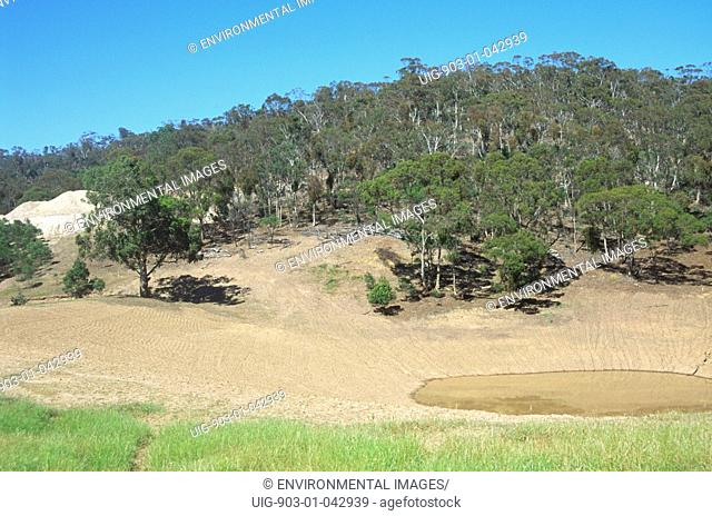 Deforestation habitat loss clearance for agriculture causing species diversity to decline e.g. Koala