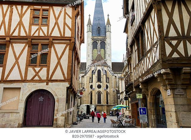 Notre-Dame church, Rue de la Chouette, Dijon, Côte d'Or, Burgundy Region, Bourgogne, France, Europe