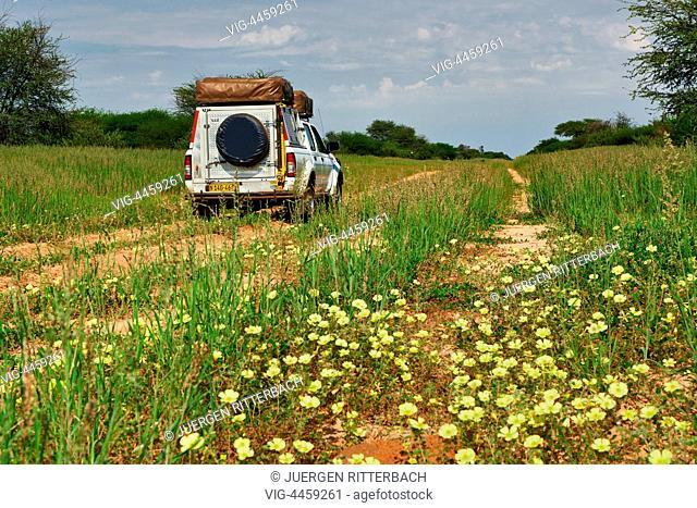 off-road to Mabuasehube, 4x4 in landscape of Kgalagadi Transfrontier Park, Mabuasehube Section, Kalahari, South Africa, Botswana