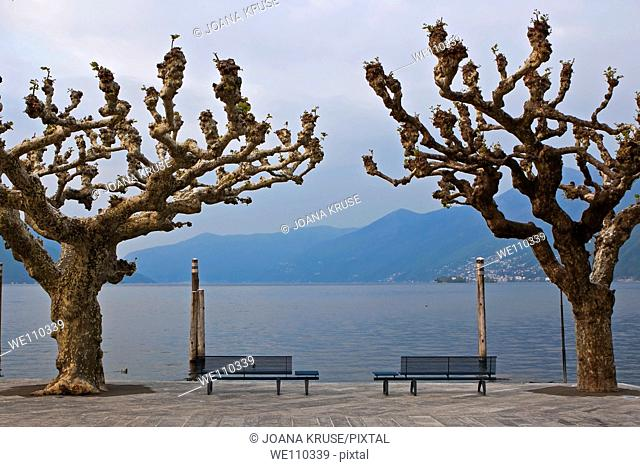 Ascona is a small and very beautiful village with a wellknown esplanade at the Lake Maggiore in Ticino, Switzerland