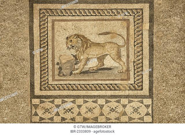 Pavement mosaics, private houses, Ephesus, Izmir Province, Turkey