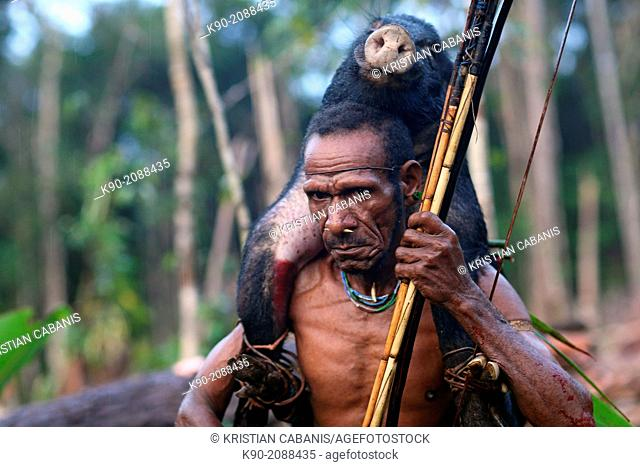 Kombai man with wild pig coming back from successful hunt, Papua, Indonesia, Southeast Asia