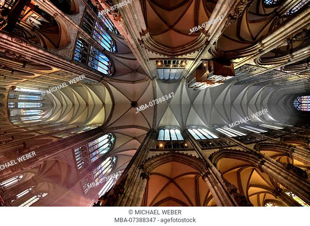 Interior view, ceiling in the nave and choir room, church vault, net vault, Cologne Cathedral, Cologne, North Rhine-Westphalia, Germany