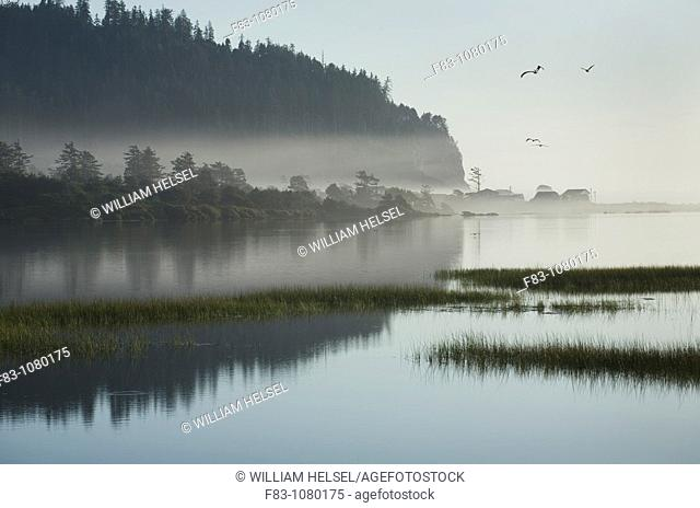 USA, Oregon, Tillamook County, Cape Meares Lake, an artificially enclosed part of Tillamook Bay adjacent to the Pacific Ocean, houses on the ocean beach, hills