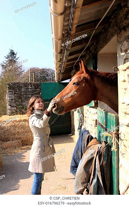 pretty young woman giving food to horses