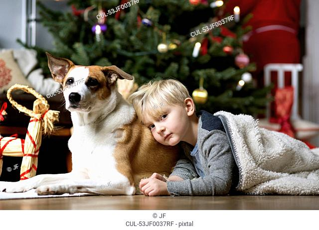 Boy and dog by Christmas tree
