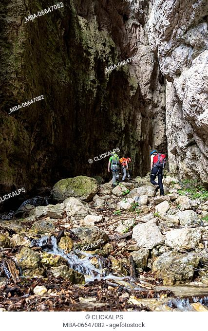 Ferrata Burrone, Mezzocorona, Trentino, Italy. Mountaineers in the gorge Burrone