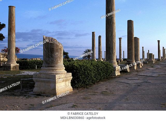 Roman city - Roman road