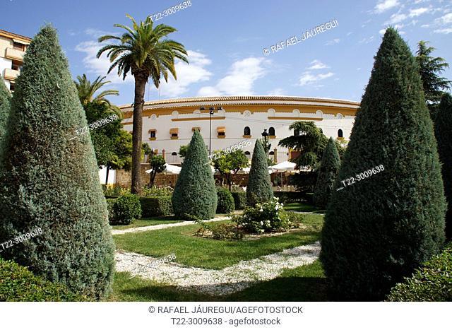 Linares (Jaén) Spain. Plaza de la Constitución in the city of Linares next to the bullring of the city