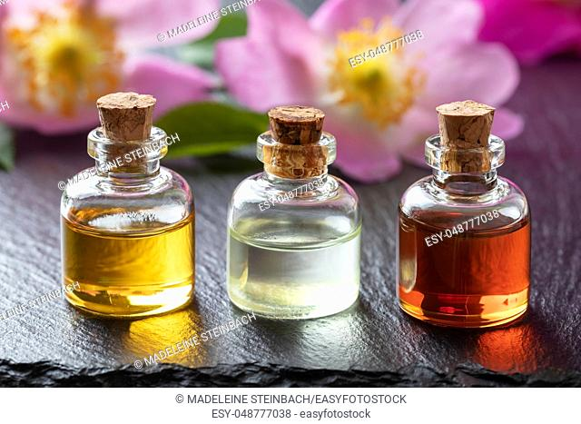Three bottles of essential oil with fresh dog rose flowers on a dark background