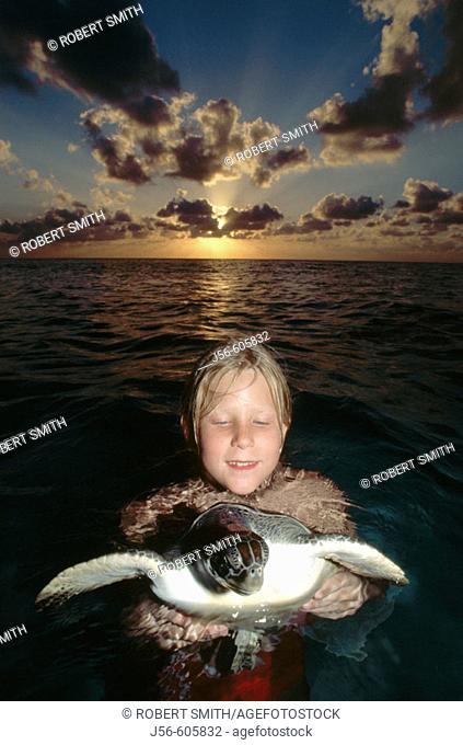 Release of Green Sea Turtle (Chelonia mydas). Cayman Islands