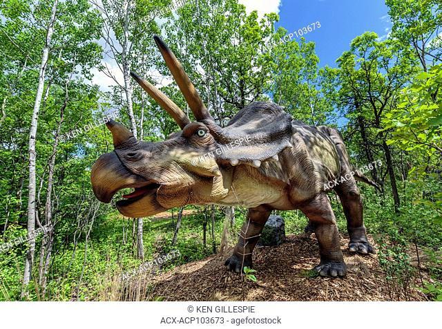Triceratops at Dinosaurs Alive, life-size animatronic dinosaur, Assiniboine Park Zoo, Winnipeg, Manitoba, Canada