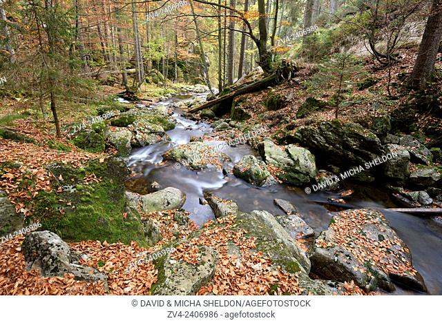 Detail of a little River in autumn in the Bavarian forest, Bavaria, Germany