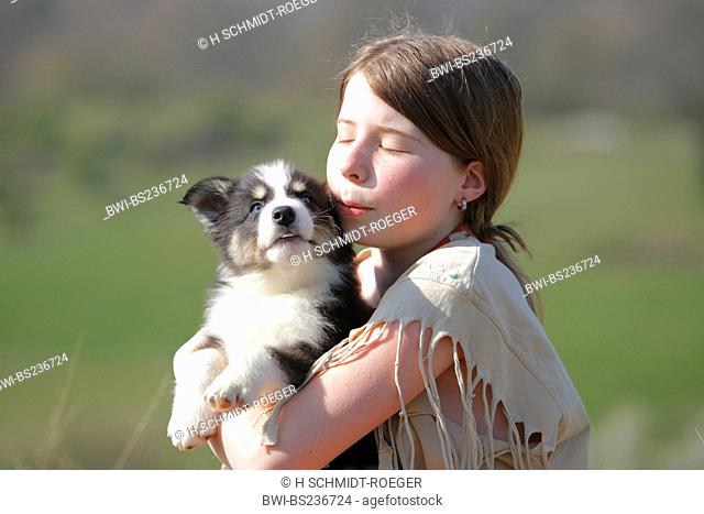 domestic dog Canis lupus f. familiaris, girl caressing the mixed breed of a Husky and an Australian-Shepherd on her arms
