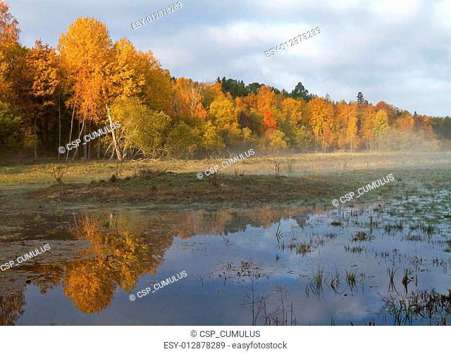 Wetlands in autumn