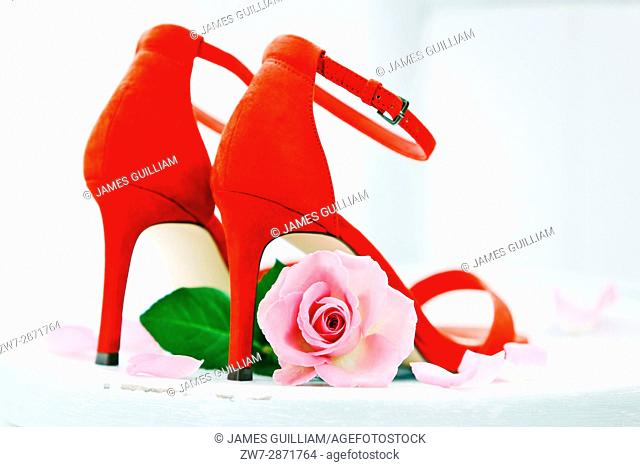 Ladies shoes and rose flower
