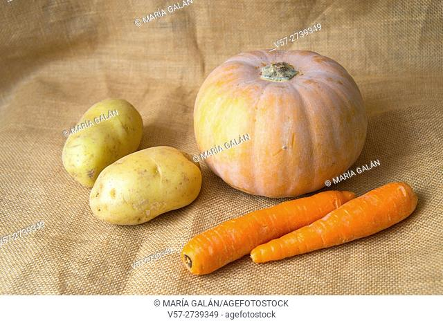 Still life: pumpkin, carrots and potatoes
